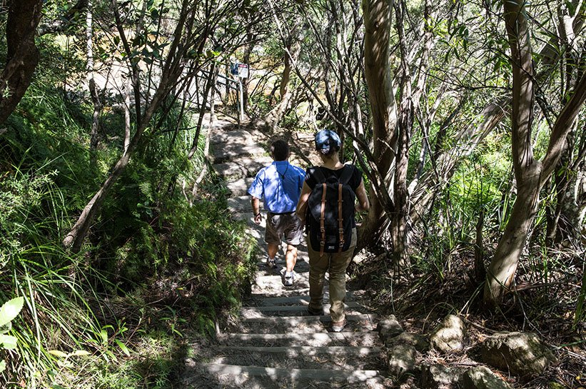 Blue Mountains Hiking