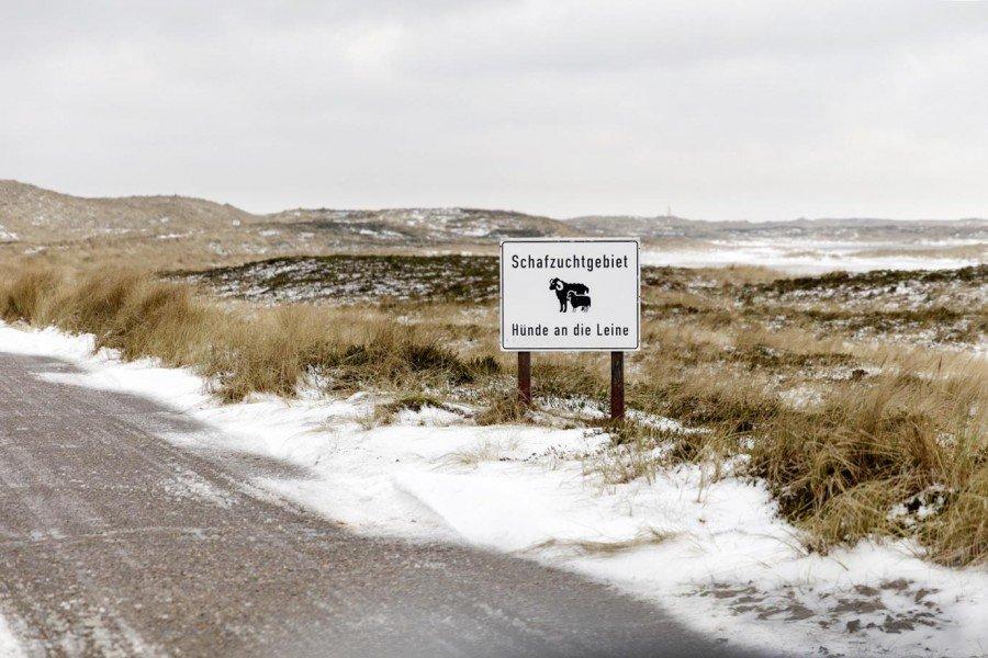 Verschneites Schild Schafzuchtgebiet Sylt