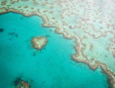 Herz Great Barrier Reef