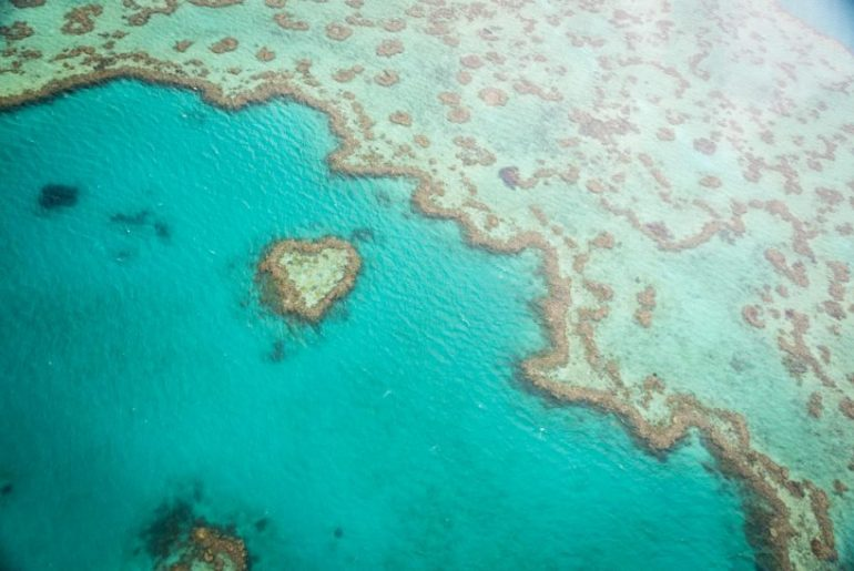 Herz Great Barrier Reef