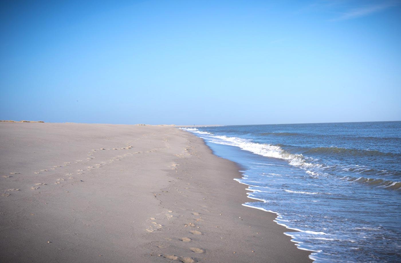 Strand Ellenbogen Sylt
