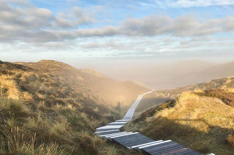 List auf Sylt im November Nebel