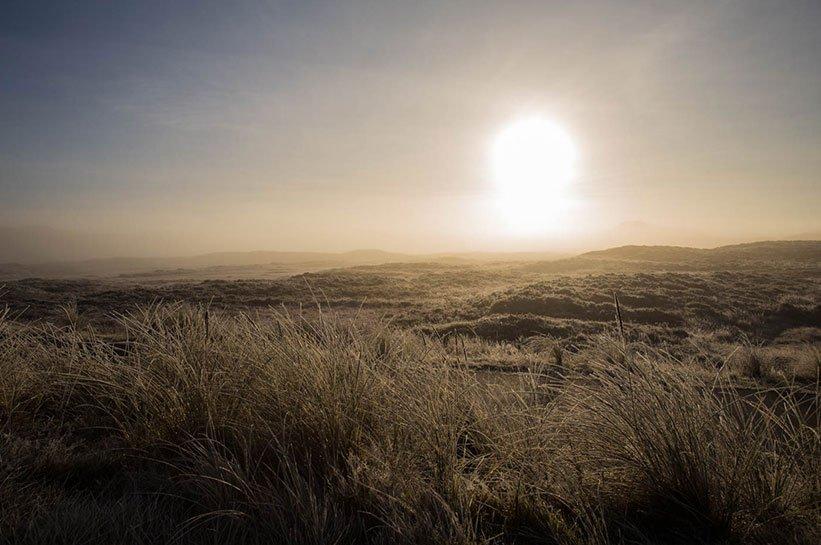 Nebel über den Dünen von Sylt im November