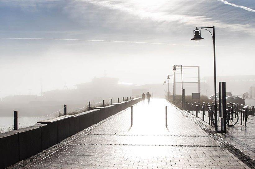 List im Nebel