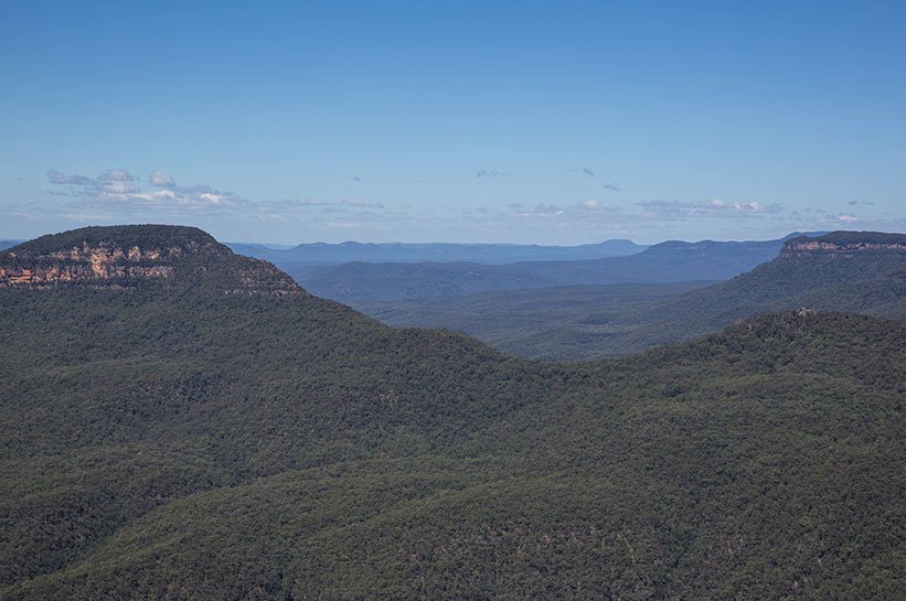 Blue Mountains Dunst
