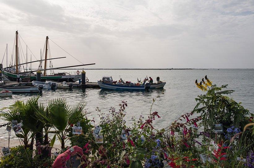 Hafen Olhao im Herbst