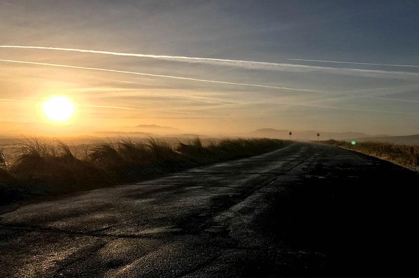 Dünen im Sonnenaufgang mit Nebel Sylt