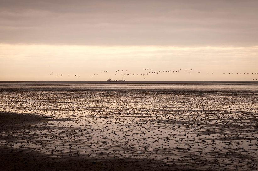 Wattenmeer Blick auf Schiff am Ellenbogen Sylt