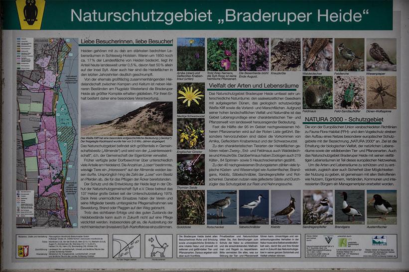 Sehenswürdigkiet Sylt Braderuper Heide