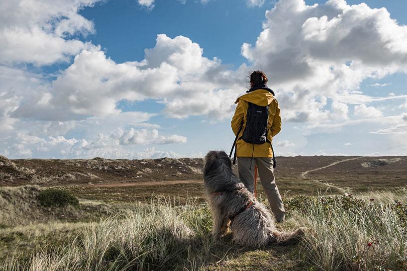 Römö mit Hund - Erfahrungen Blick auf die Dünen