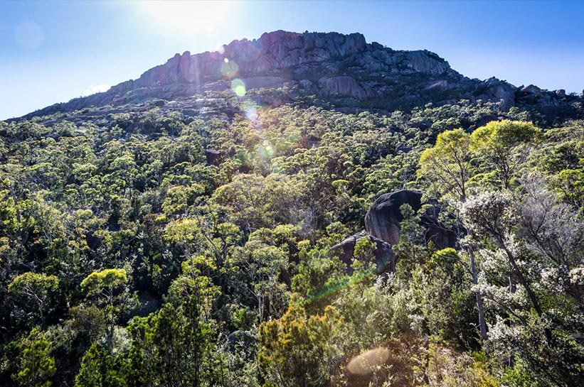 Tasmanien Natur