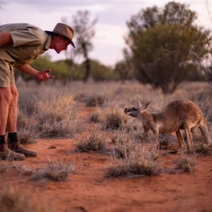 Kangaroo Sanctuary in Alice Springs