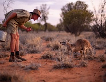 Kangaroo Sanctuary Alice Springs Chris und Kangaroo