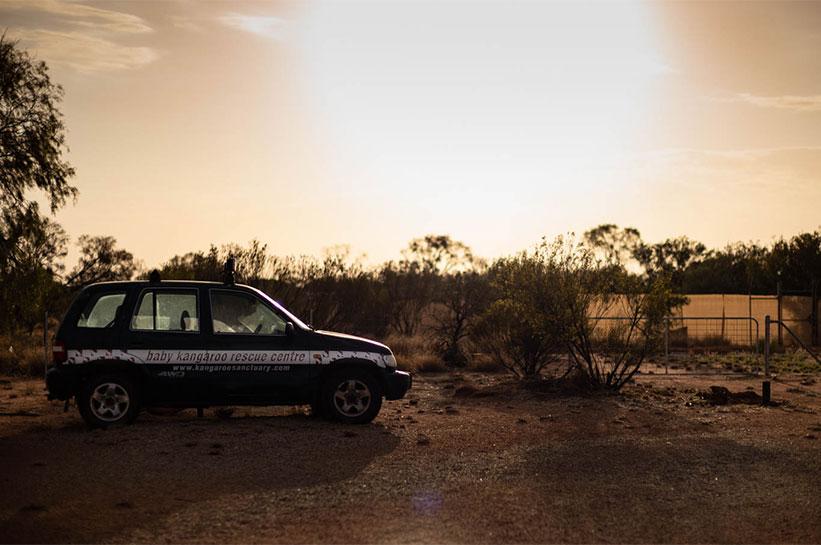 Kangaroo Sanctuary Alice Springs Rescue Car
