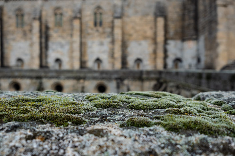 Evora Portugal Kathedrale Dach