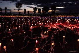 Field of Light mit Longitude 131