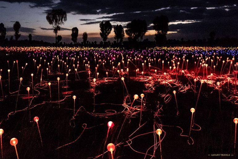 Field of Light Australien