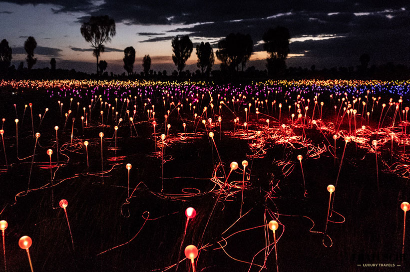 Field of Light Australien