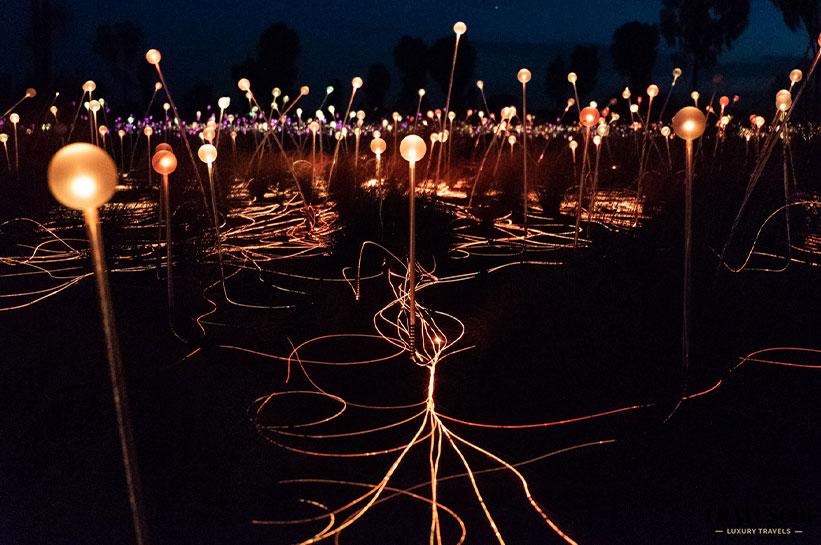 Field of Light bei Nacht