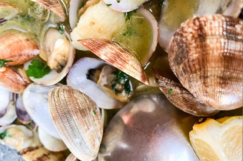 Muscheln an der Westküste Portugals