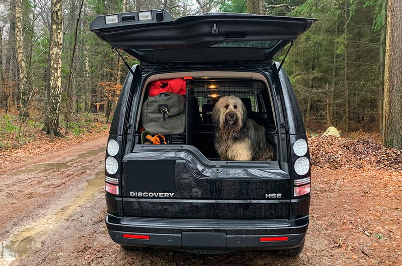 Reisen mit Hund Kofferraum Ansicht