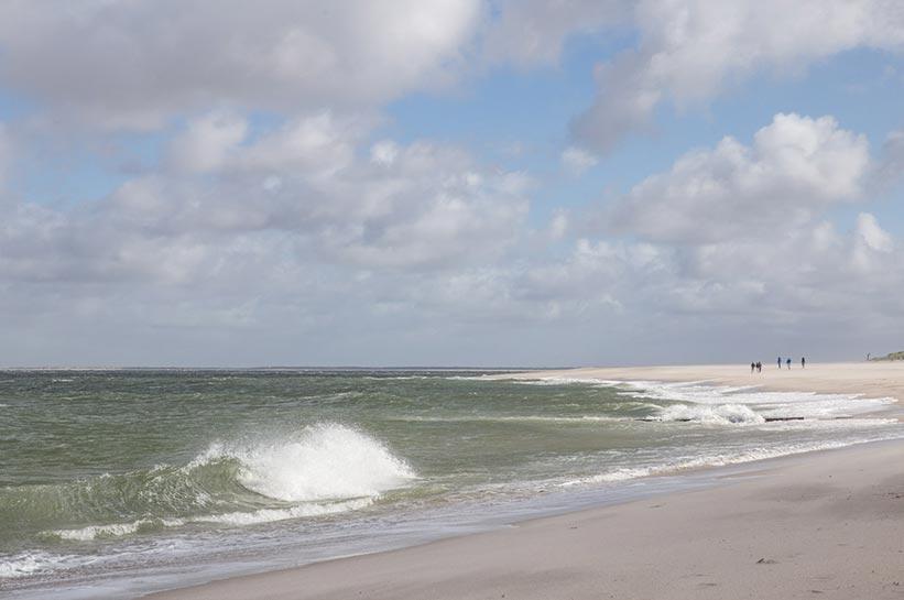 Ellenbogen auf Sylt Strand