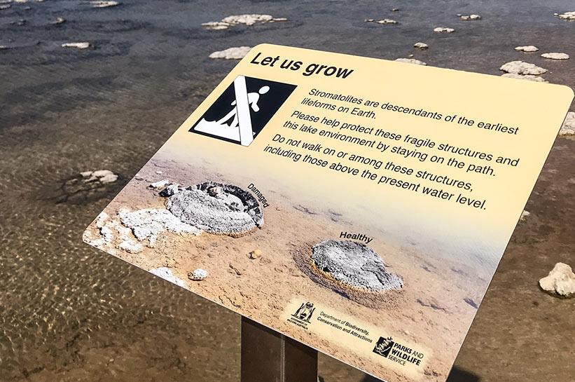 Lake Thetis Cervantes Stromatolithen