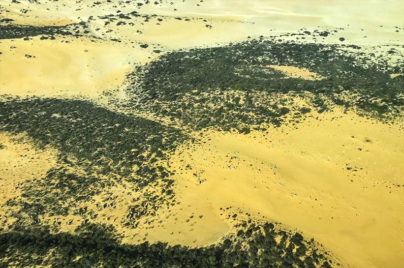 Pinnacles Wüste von oben