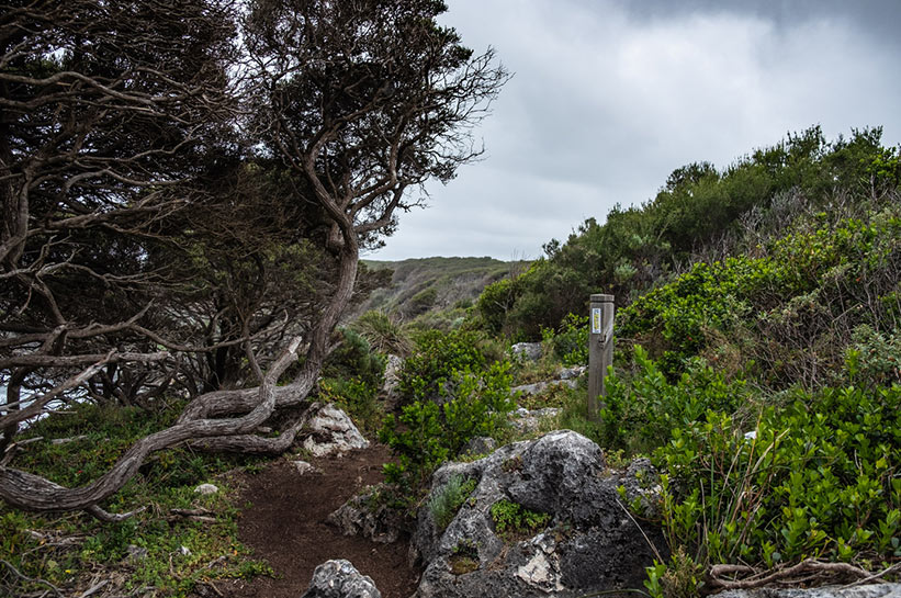 Pfad an der Küste Westaustraliens