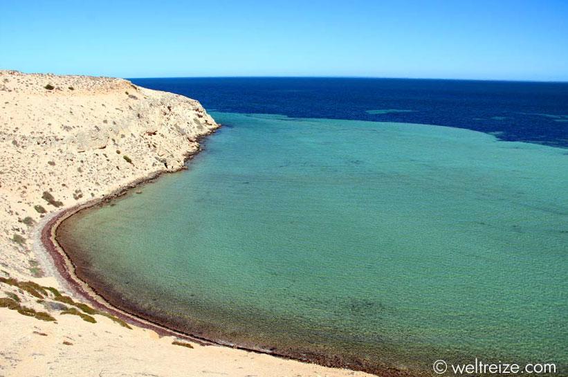 Westaustralien Shark Bay