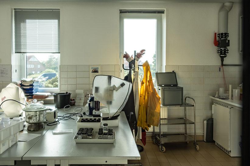Forschung im Alfred Wegener Institut Büro