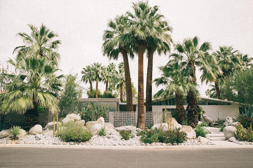 Palm Springs mit Kindern