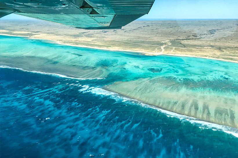 Saumriff Australien Ningaloo Western Australia Reef