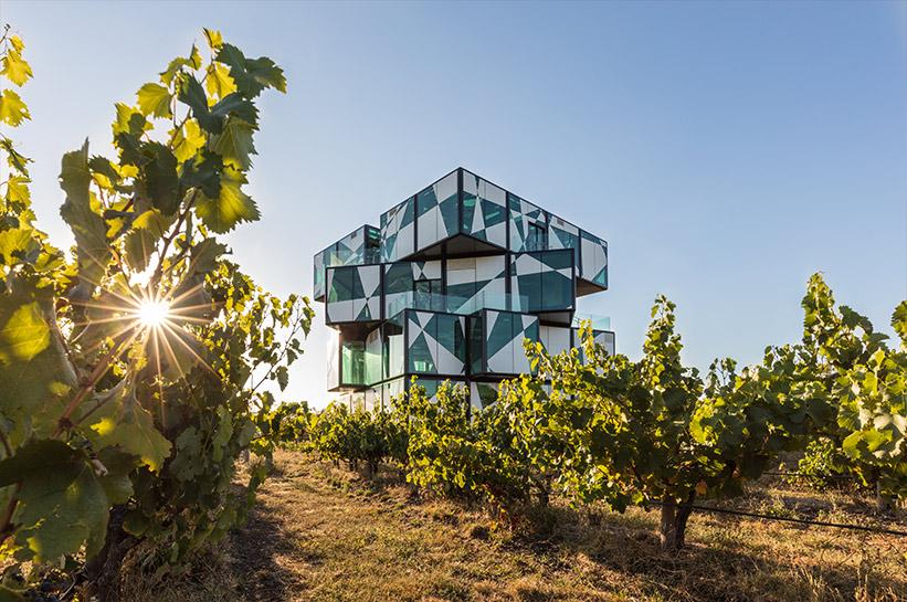 Weingut Darenberg Südaustralien
