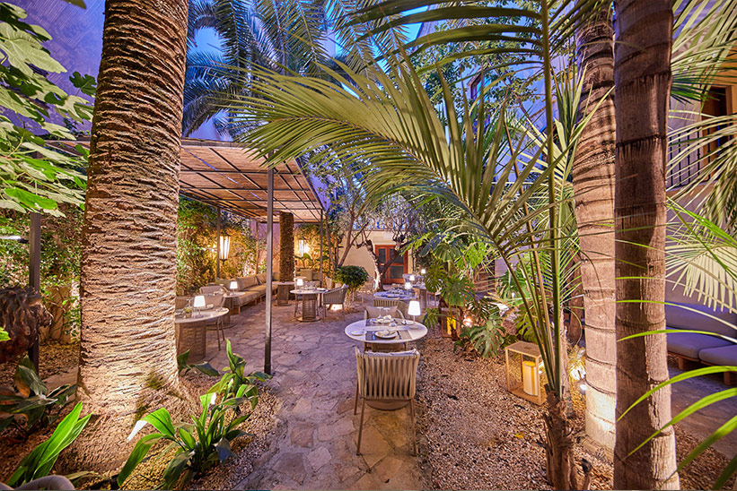 Palmengarten Mallorca Can Marques
